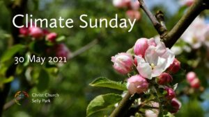 Title graphic for Sunday service 30 May 2021